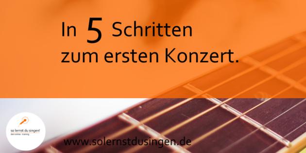 Mit diesen 5 Schritten planst du erfolgreich dein erstes Konzert